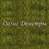 Студия ландшафтного дизайна Оазис Деметры отзывы