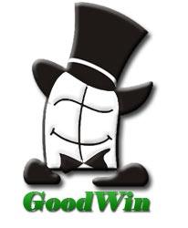 Компания  ГудВин отзывы