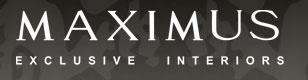 Компания MAXIMUS отзывы
